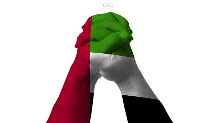 National Day Of Uae Logo