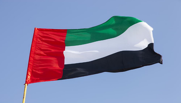 UAE National Day flag Image
