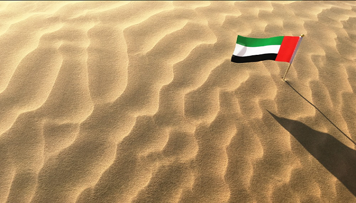 United Arab Emirates National Day Flag Image