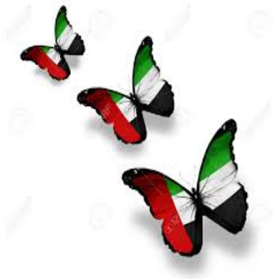 UAE National Day Flag Cartoon