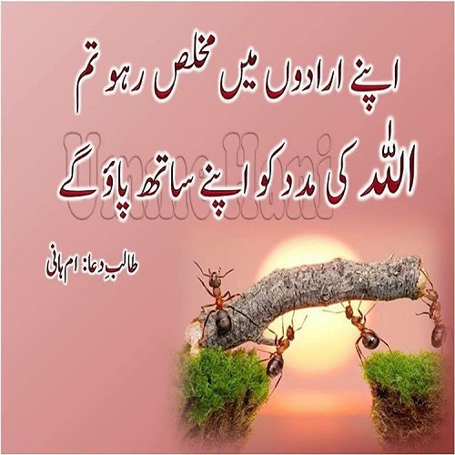 Islamic Quotes Urdu 2018