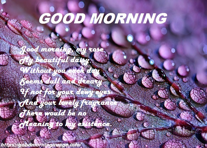 Good Morning SMS Download