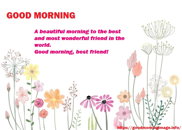 Good Morning Friendship Quotes Flowers