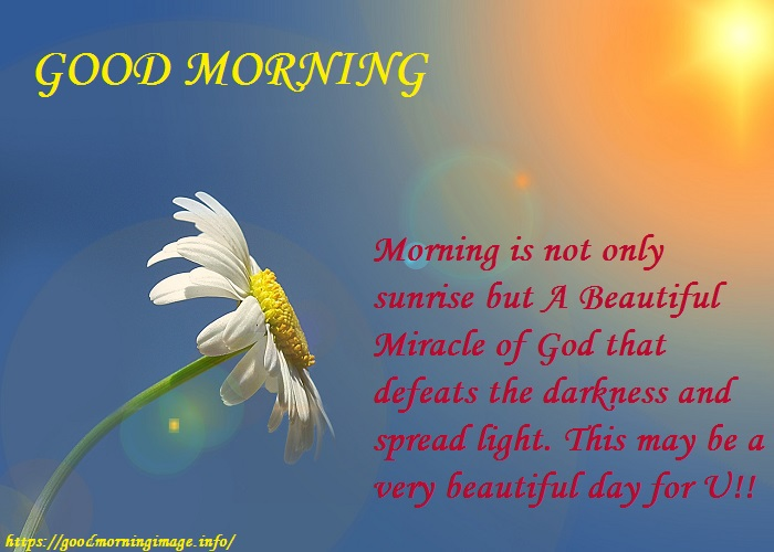 Good Morning Friendship Quotes New